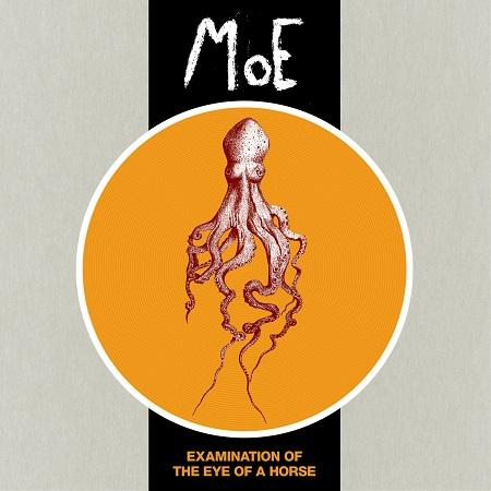 Moe - Examination of the Eye of a Horse