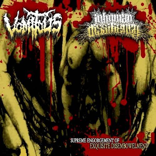 Inhuman Dissiliency - Discography