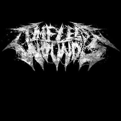 Timeless Wounds - Discography (2015 - 2019)