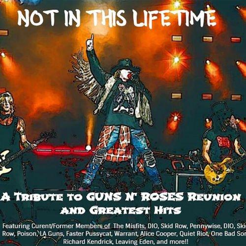 Various Artists - Not In This Lifetime: A Tribute To Guns N Roses' Reunion & Greatest Hits