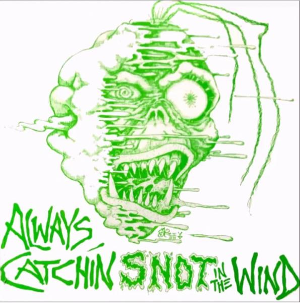 Various Artists - Always Catching Snot In The Wind (Compilation)