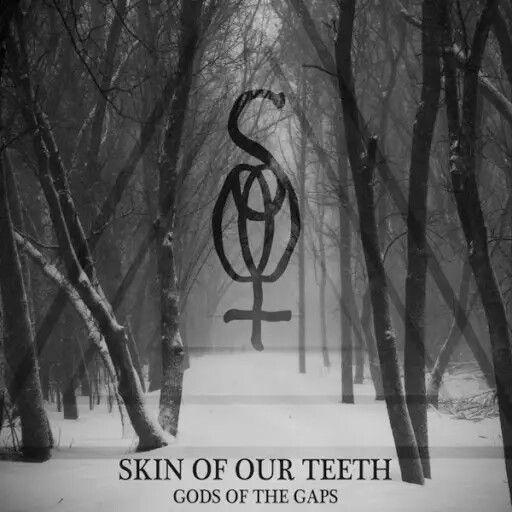 Skin of Our Teeth - Gods of the Gaps