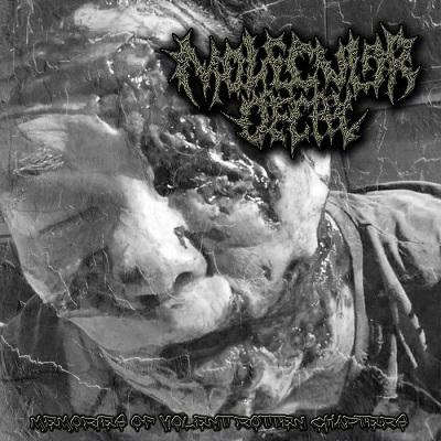 Molecular Decay - Memories of Violent Rotten Chapters