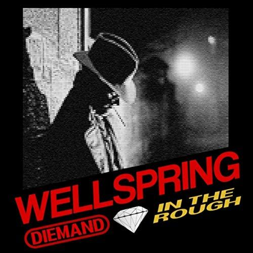 Diemand In The Rough - Wellspring