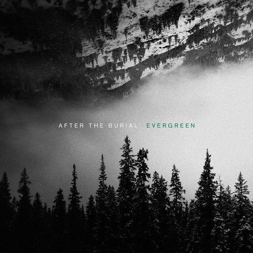 After the Burial - Evergreen