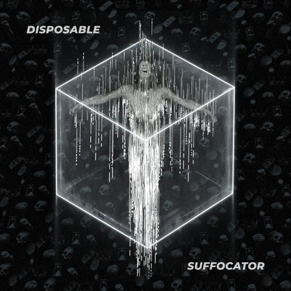 Disposable - Discography (2011 - 2019)