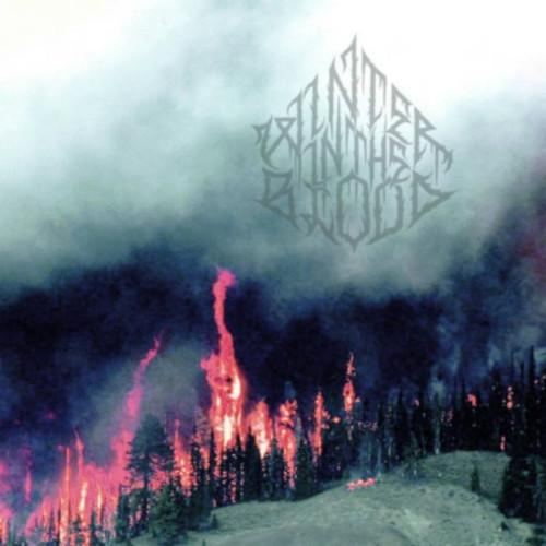 Winter in the Blood - Forest Fires