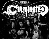Culminated - Discography