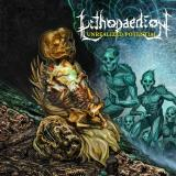 Lithopaedion - Unrealized Potential (EP)