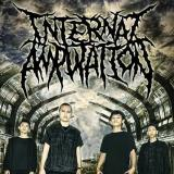 Internal Amputation - Discography (2012 - 2014)