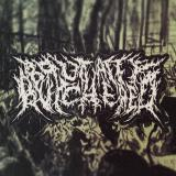 Brutally Butchered - Discography (2010 - 2012)