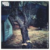 Virtual Time - From the Roots to a Folded Sky