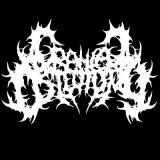 Cranial Osteotomy - Discography (2011 - 2018)
