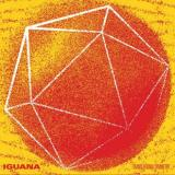 Iguana - Translational Symmetry