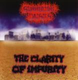 Summertime Daisies - The Clarity Of Impurity (Compilation)