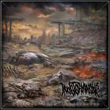 Indeterminable - Discography (2011-2015)