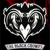The Black Crowes - Discography (1990-2013) (Lossless)