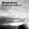 Disobedient - Forests We Walk In